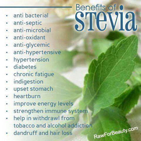 Benefits Of Stevia.  The real stevia powder is not chemically processed, is not white. Look at the colour of the stevia plant.