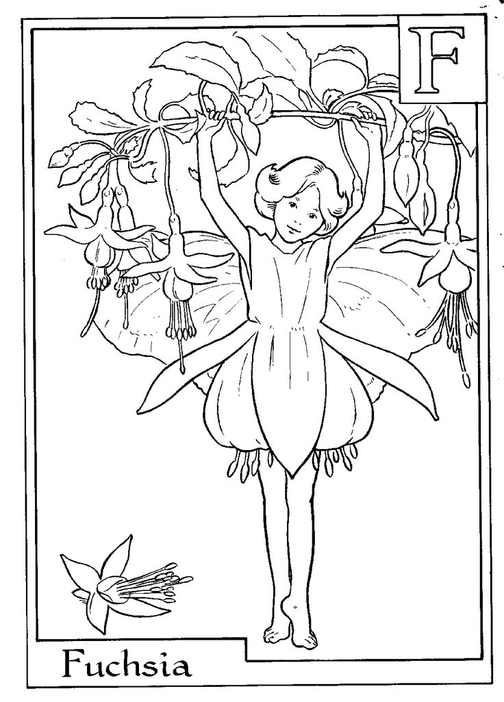 fairy colouring printable page f is for fuschia used to love these when i
