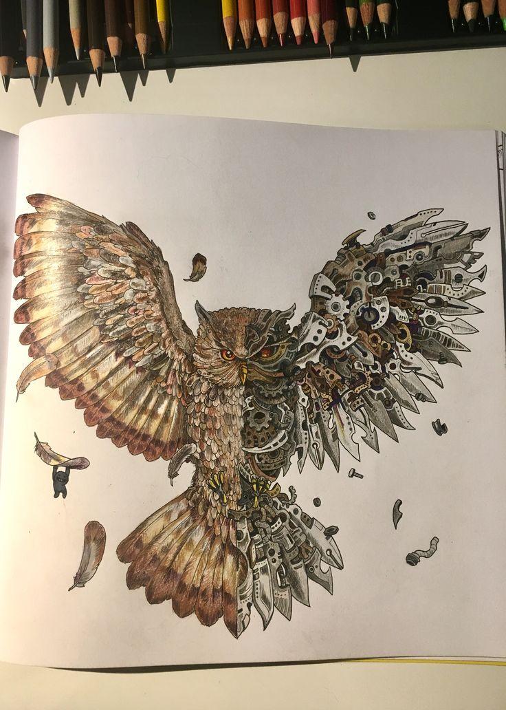 Imagimorphia coloring book owl