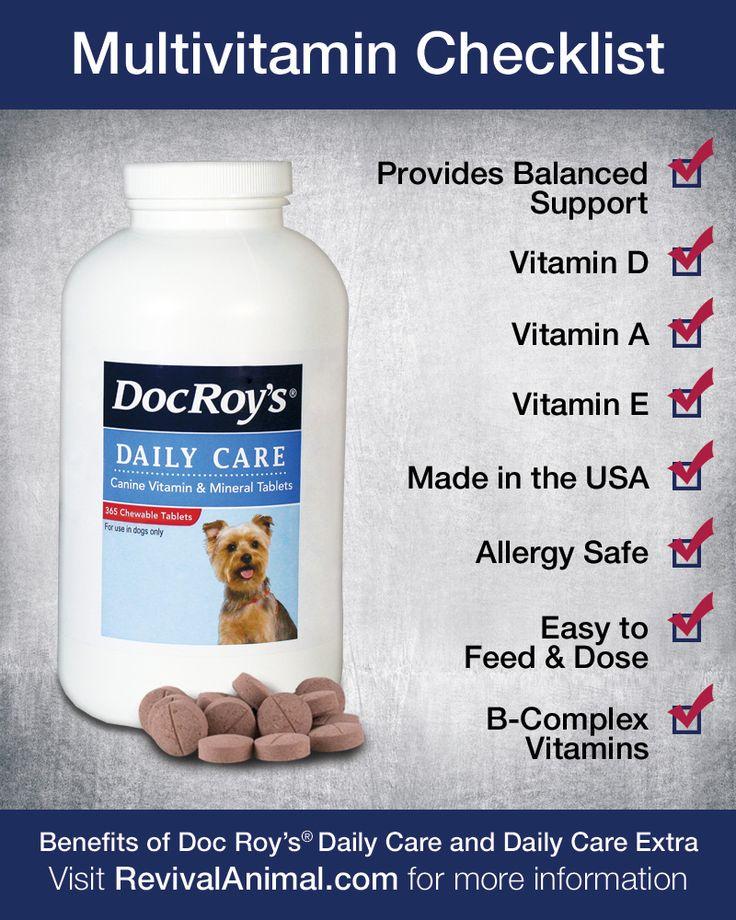 Best Inexpensive Dog Multivitamin