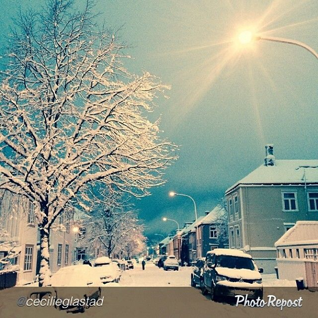 Trondheim covered in snow. Photo: @cecilieglastad