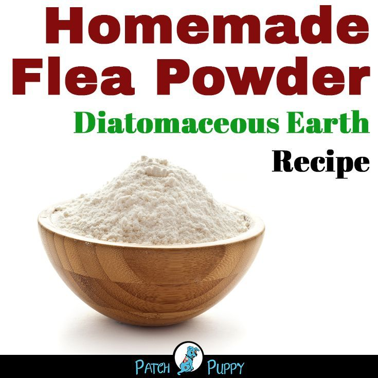 Diy Flea Powder For Dogs Recipe Flea Powder Flea Powder For Dogs Fleas
