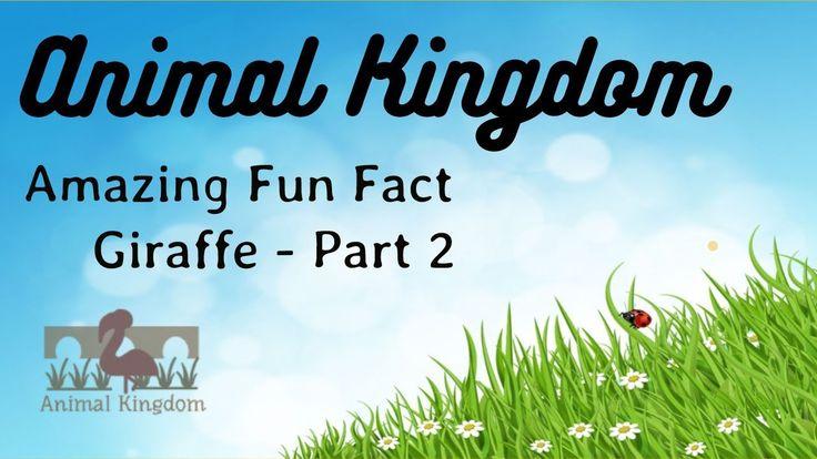 Animal Kingdom - Amazing Fun Fact about Giraffe  – Part 2