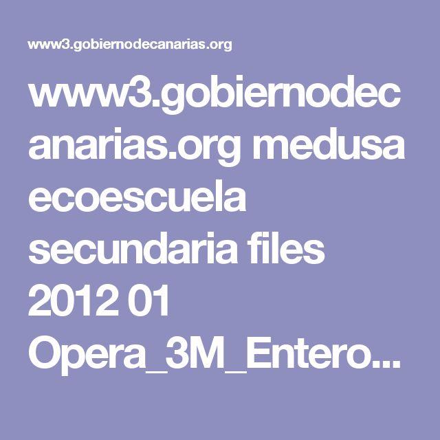 www3.gobiernodecanarias.org medusa ecoescuela secundaria files 2012 01 Opera_3M_Enteros1.swf