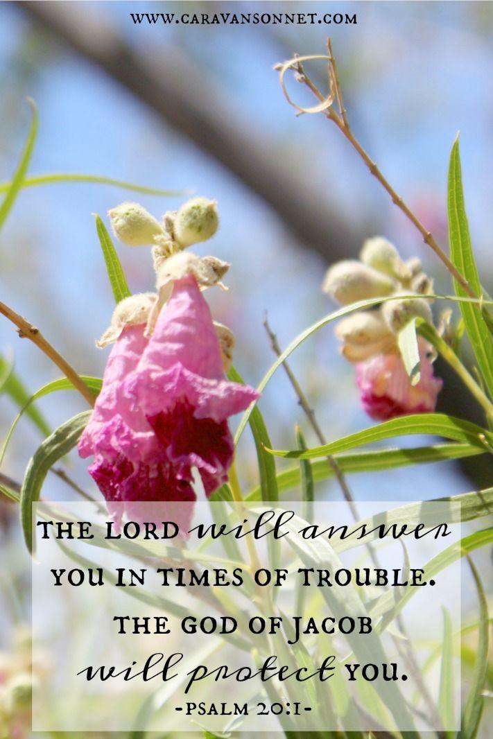 Psalm 20:1 #scripture #psalm20 #caravansonnet