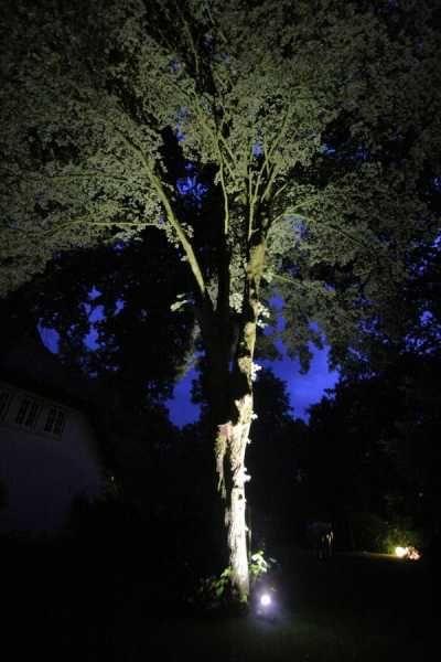 Lichtinszenierung für einen Garten