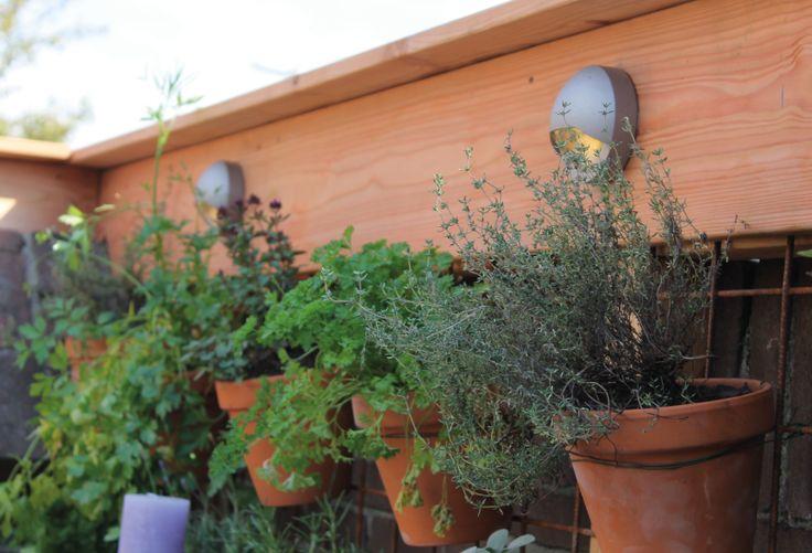 Kruidentuin | Tuin | Wandlamp | BLINK