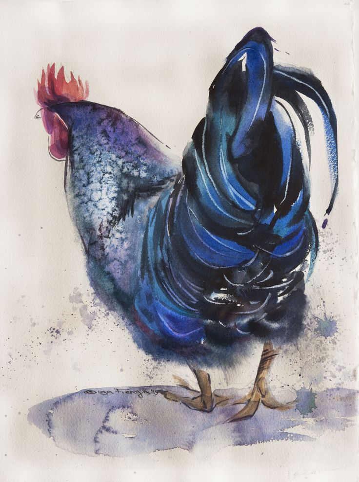 blue rooster # 1 watercolor on paper 28*38 sm arches 300 @Olga Flerova  http://www.saatchiart.com/account/profile/425625