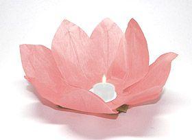 Magiques, ces fleurs lampions en papier qui flottent sur l'eau ou se posent sur vos tables ou buffets. En Asie, et plus particulièrement en Thaïlande, les invités sont conviés à déposer ces lanternes sur l'eau et formulent en même temps un voeu de bonheur. On les appelle ainsi les Lanternes du Bonheur !. Lanterne flottante lotus Thai rose