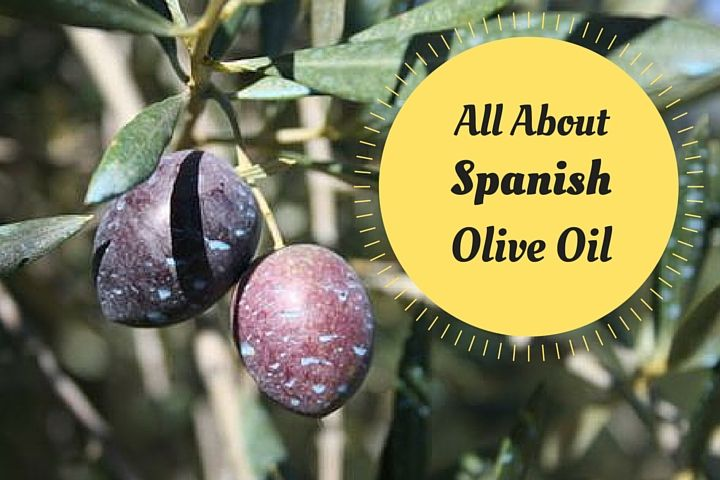 All About Spanish Olive Oil
