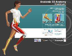 L'anatomie en 3D, une avancée majeure pour les étudiants et enseignants