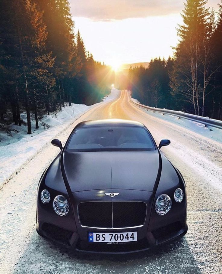 Luxury Cars Bentley Car Cars: Best 25+ Bentley Car Ideas On Pinterest