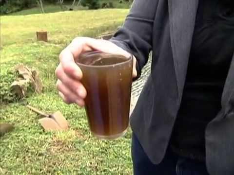 Globo Rural ensina a fazer o Bokashi -  composto 100% orgânico para turbinar as plantas.