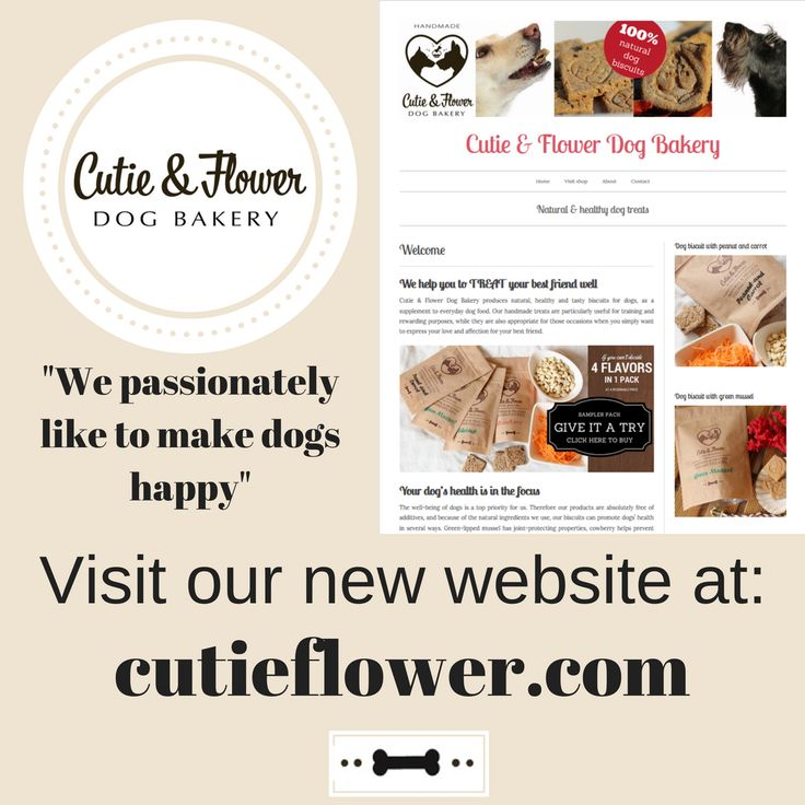Visit our website at cutieflower.com