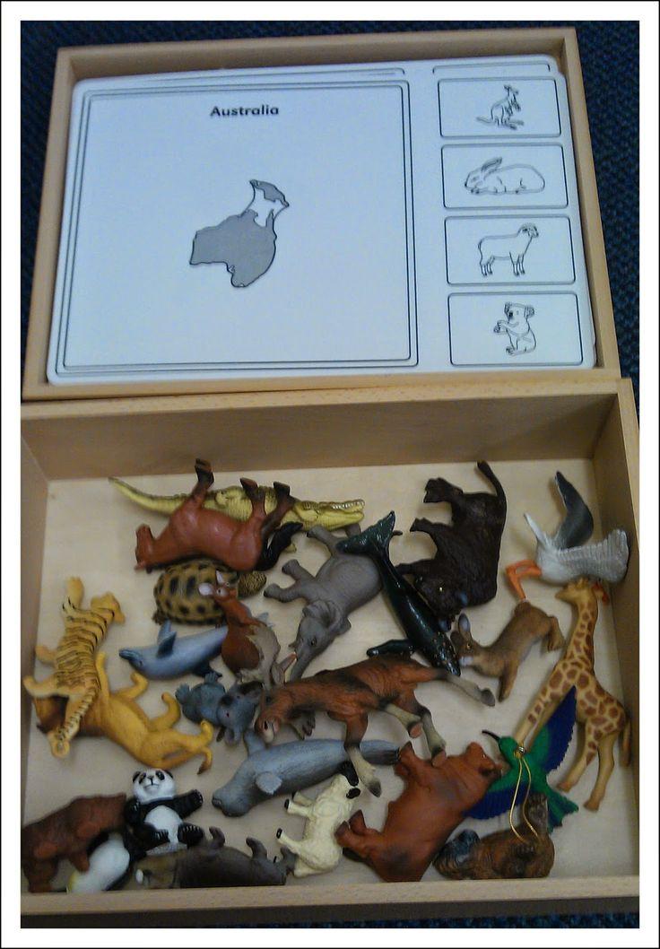 Montessori Nature: Teaching Geography in the Montessori Classroom.