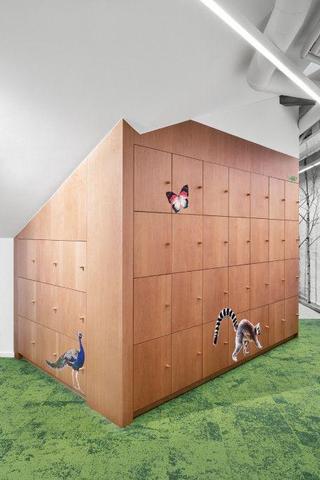 Augur | MER Architects