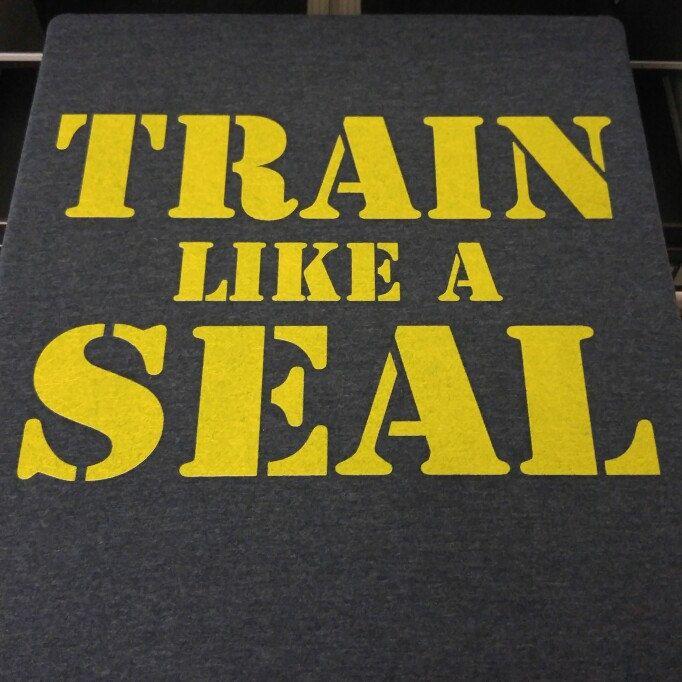 Navy Seal Training Tshirt 👊😎👈