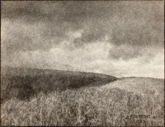 Storm In A Cornfield | LACMA Collections