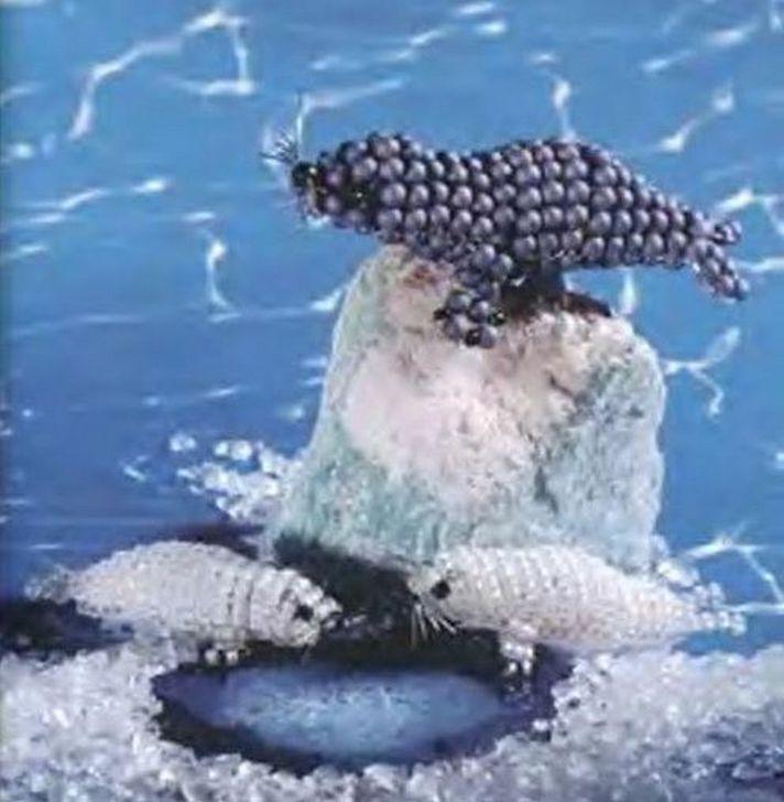 Морские котики и дельфины