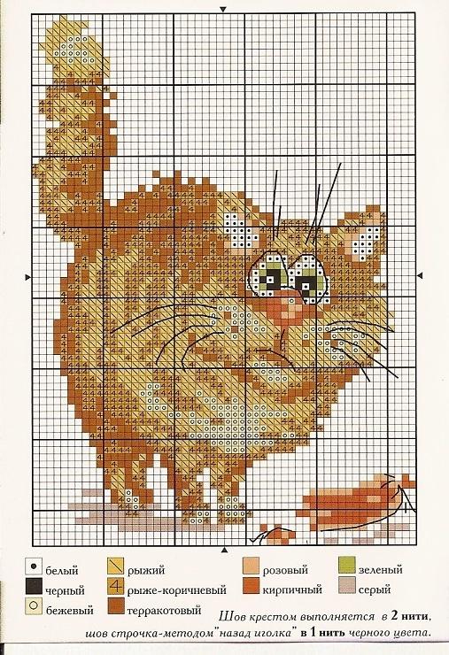 (2) Gallery.ru / Foto # 2 - un gatto con salsiccia - muha-cc: