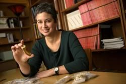African Archaeology News and the latest discoveries at www.african-archaeology.net : news