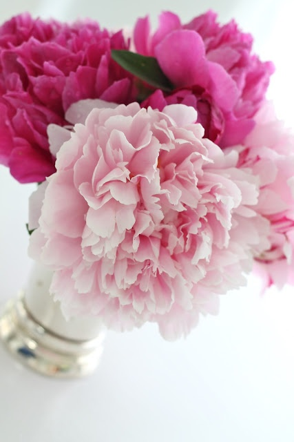 peonies in mint julep cups create beautiful, vibrant decor for weddings and showers