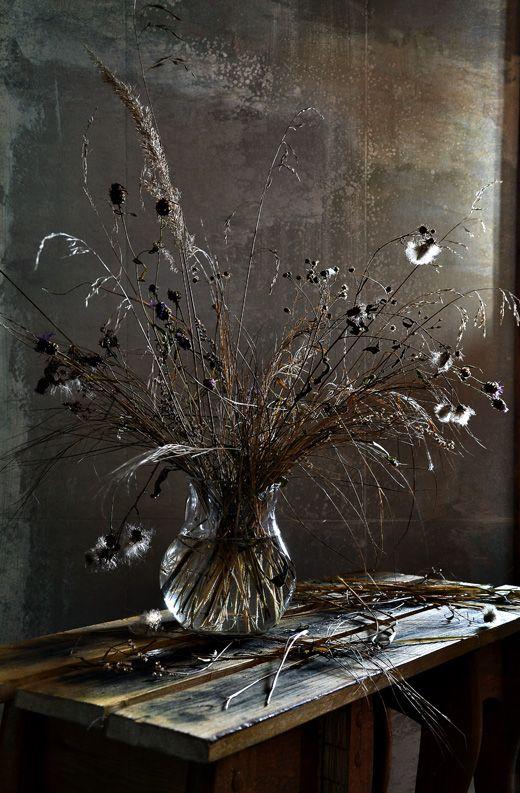 #still #life #photography • photo: ноябрьский букет - 2 / цвет | photographer: Настя Клюнина | WWW.PHOTODOM.COM