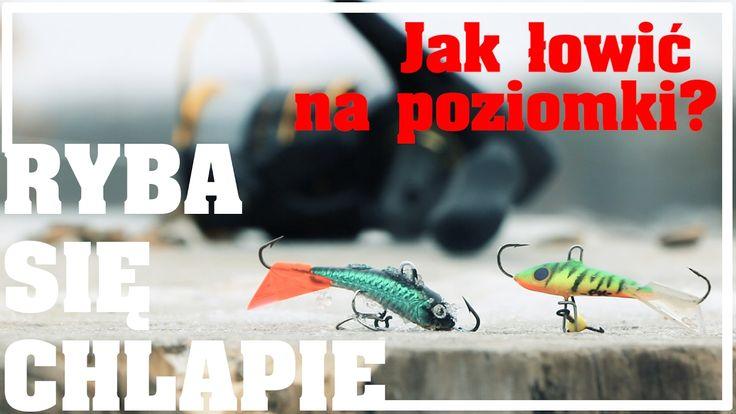 Gościnnie na kanale Ryba się chlapie - łowimy na poziomki! #wędkarstwo #filmwędkarski