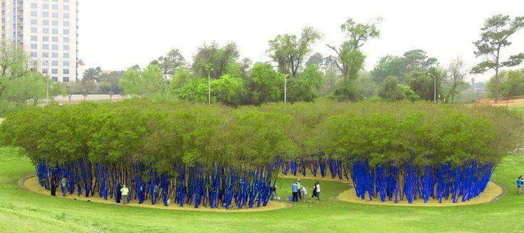 Konstantin Dimopoulos | The Blue Trees 2013 | Houston, USA  | Photo: Thomasid Rolls