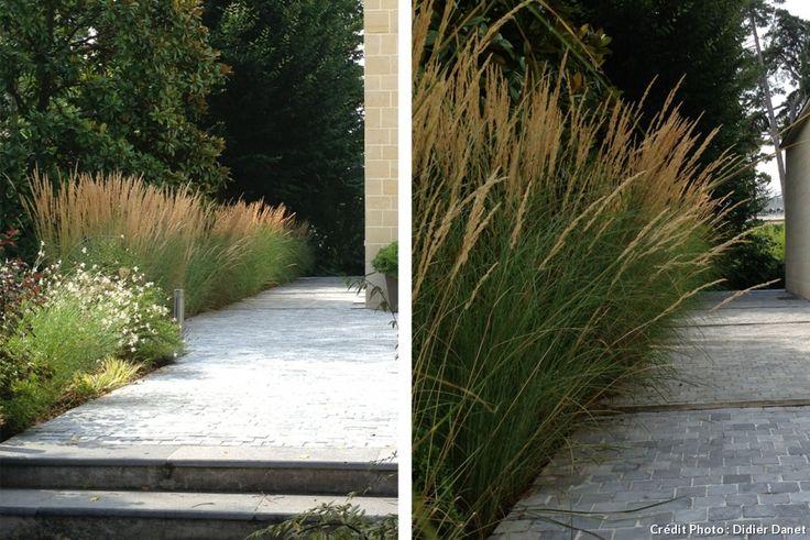 Les 25 meilleures id es concernant le tableau plantes d 39 ombre de jardin sur pinterest plantes for Jardin ombre et lumiere