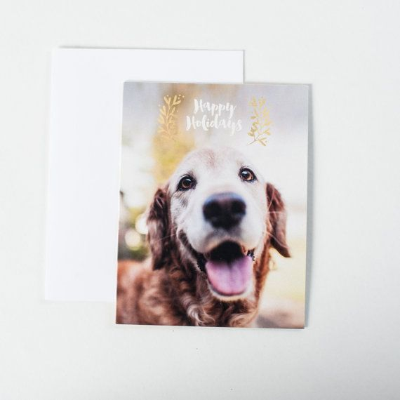 7 best greeting cards images on pinterest etsy greeting cards and smiling golden retriever pet card dog lover happy holidays greeting card christmas card pet holiday cards merry and bright m4hsunfo