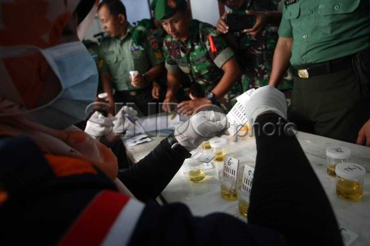 Anggota Kodim 0733/BS Semarang Ikuti Tes Urine http://sin.do/avx5  http://photo.sindonews.com/view/11612/anggota-kodim-0733-bs-semarang-ikuti-tes-urine