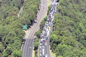 This is the motorway to Gosford...a particularly bad traffic jam but you get the idea, beautiful bushland right up to the road.