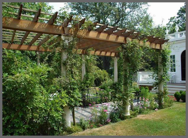 plants on the sides: Gardens Ideas, Back Patio, Grape Vines, Gardens Structure, Outdoor Living, Arbors, Backyard, Pergolas Ideas, Gardens Plants
