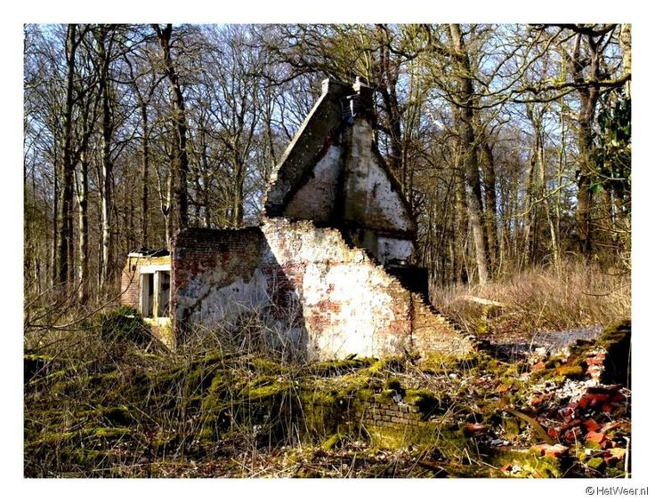 Een verlaten bos waar John met zijn luitenant introk om zeldzame bloemen te vinden. het was 1 kilometer van het front afgelegen bos, daar vonden ze gesneuvelde Fransen.