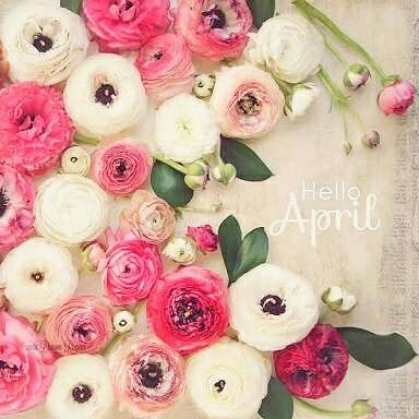 Hello April_____.🌼🌼🌼 * #helloapril #spring #autumn #goodbyesummer #seeyouagain #artificialflowers #silkflowers #fakeflowers #flowers #flowerarrangement #simple #cute #sweet #pretty #lovely #gift #present #foryou #interior #onlineshop #online #webshop #sell #shopping #ashleyfleur #melbourne #australia