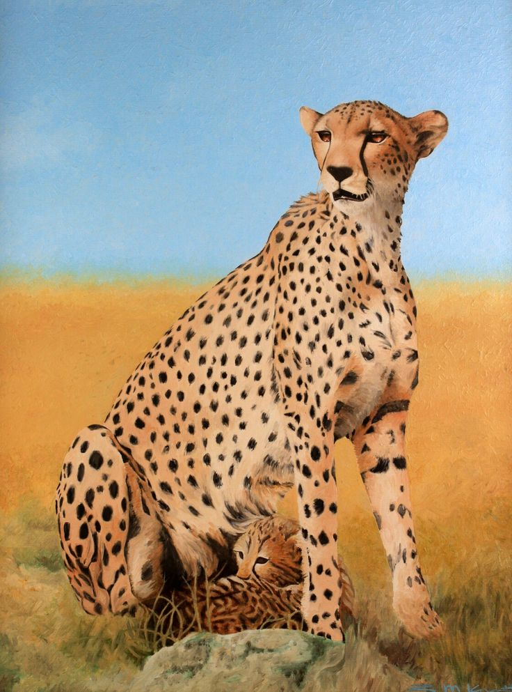 Cheetah and baby in oils by Simon Knott #artist at simbird.com