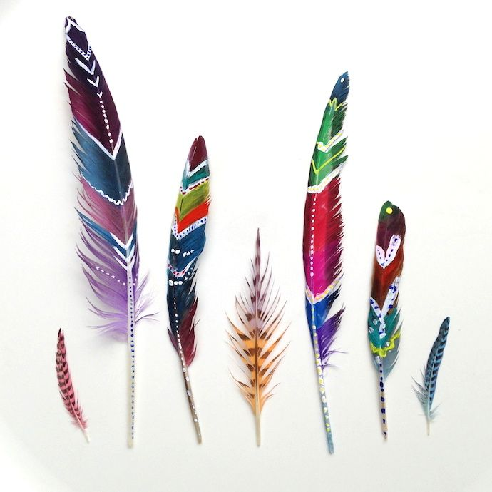 Little Brother Painted Feathers