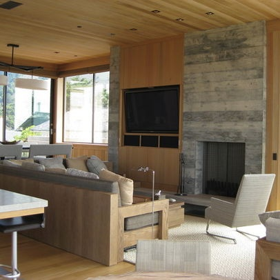 Built In Tv And Fireplace Design Ideas, Pictures, Remodel, and Decor - page 3