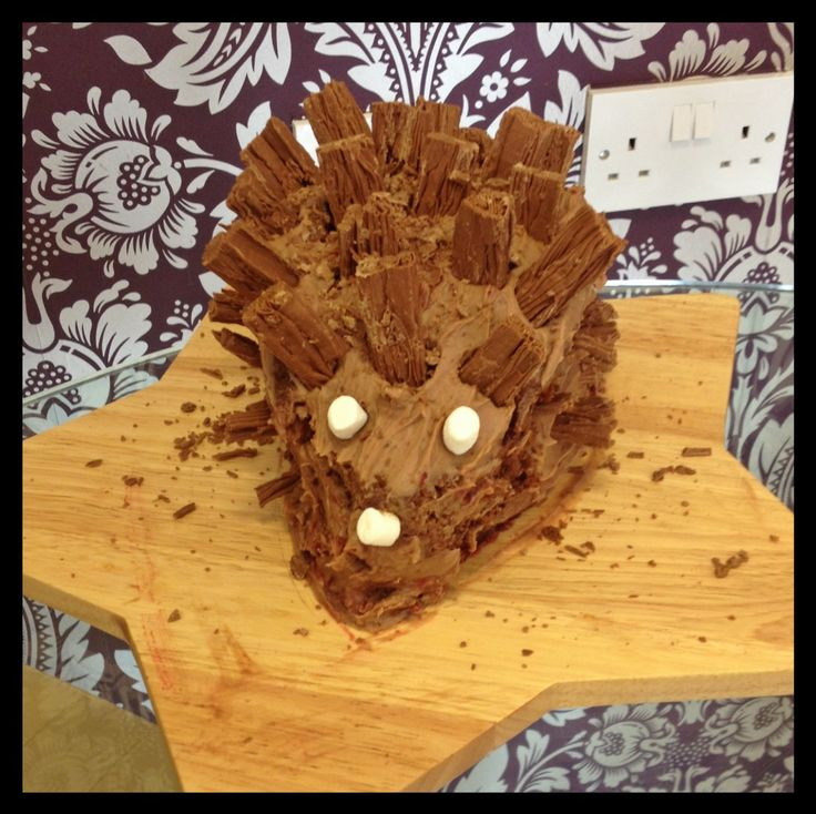 A chocolatey hedgehog snuck into our kitchen for Cake Day, Dress-Down Friday! Needless to say, it disappeared very quickly! Raising money for @woodlandtrust today! #chocolatehedgehogcake #dressdownfriday #fundraising