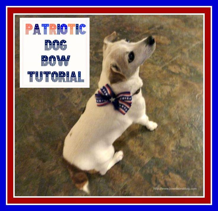 Best Hair Bows Bow Adorable Dog - 8c0eac4e3eeed74042661774a6b69dfa--dog-bows-bow-tutorial  Image_586164  .jpg