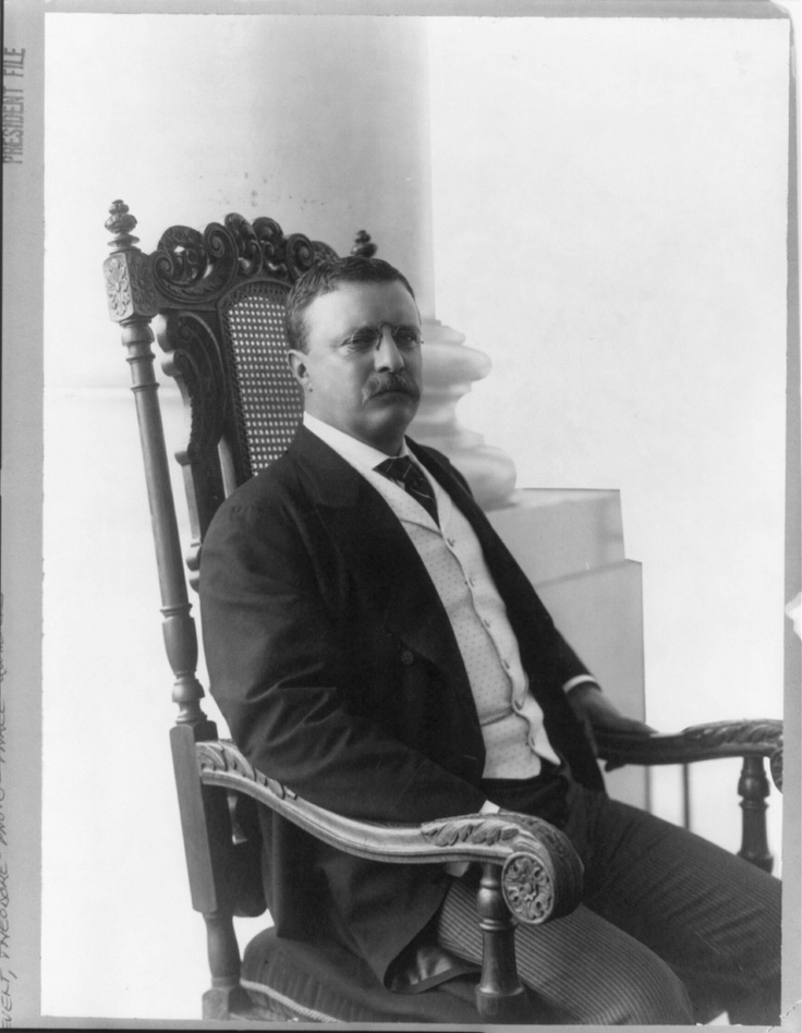 A biography of theodore roosevelt an american president