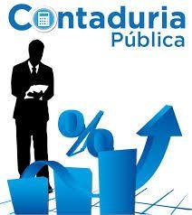 contaduria publica y auditoria