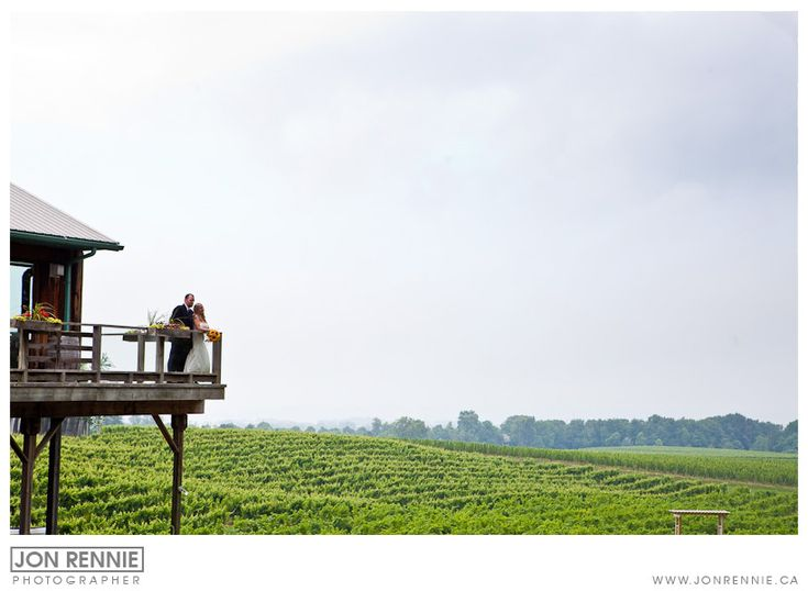 Gorgeous wedding Views at Mike Weir Winery Jon Rennie Photographer