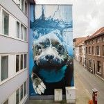 Giant Underwater Dog Mural on the Streets of Belgium by 'Smates'