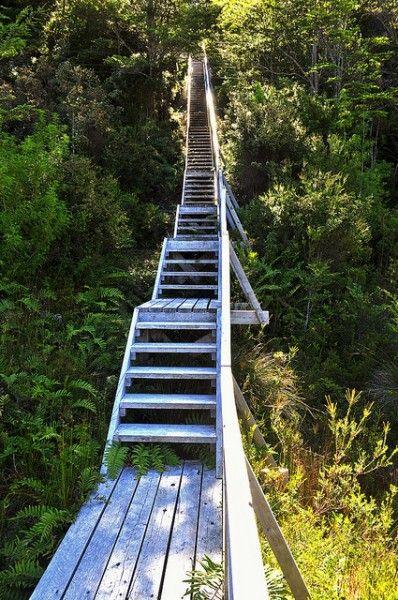 028-escalera-al-cielo-en-caleta-tortel