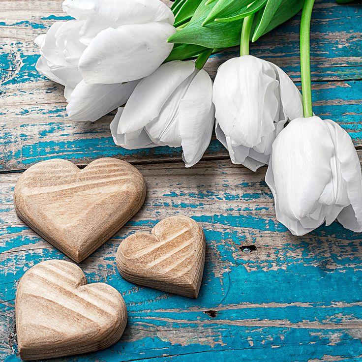 Simpatia para amor voltar: Faça essa simpatia para amor voltar rápido e fácil: e vai ver ele voltar arrependido para os seus braços!