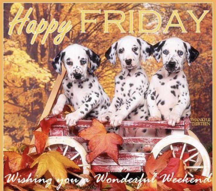 Friday Happy Friday