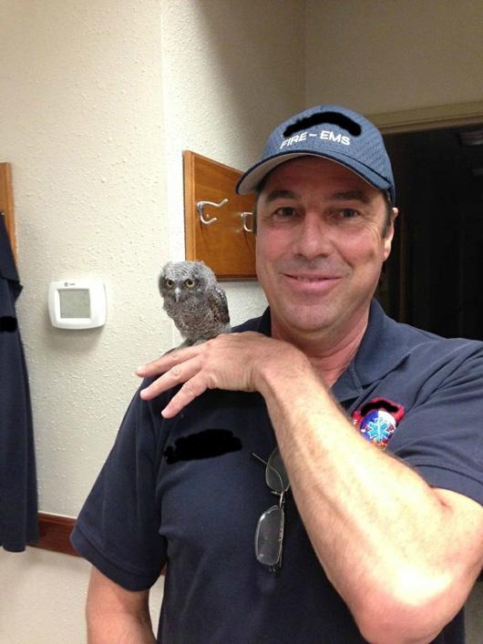 Firefighters Rescue an Owl | Viral Nova
