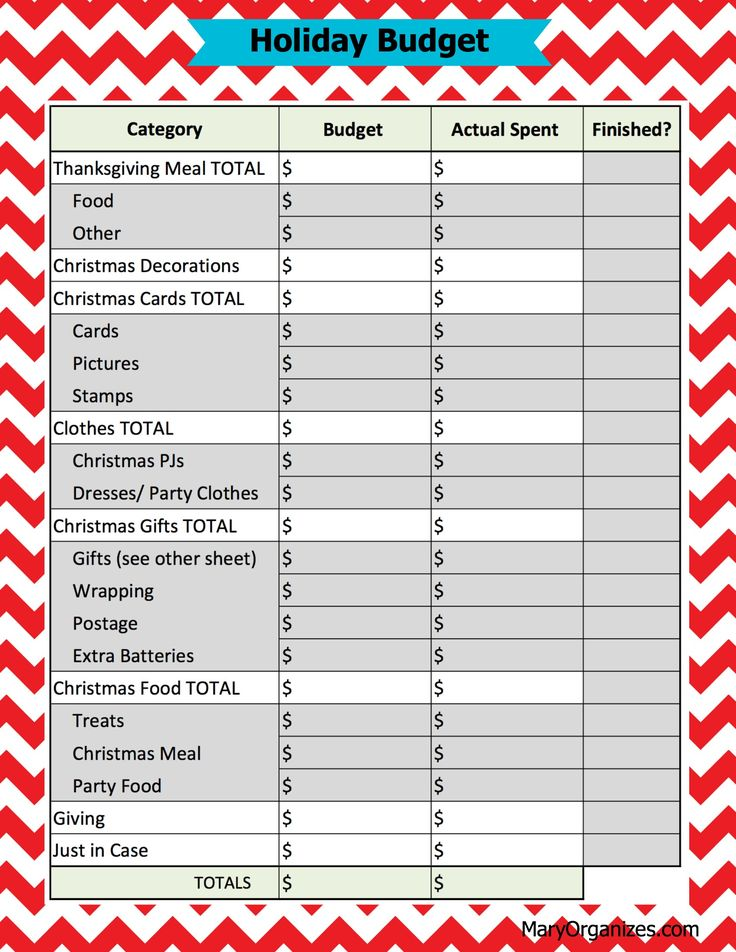 party budget template